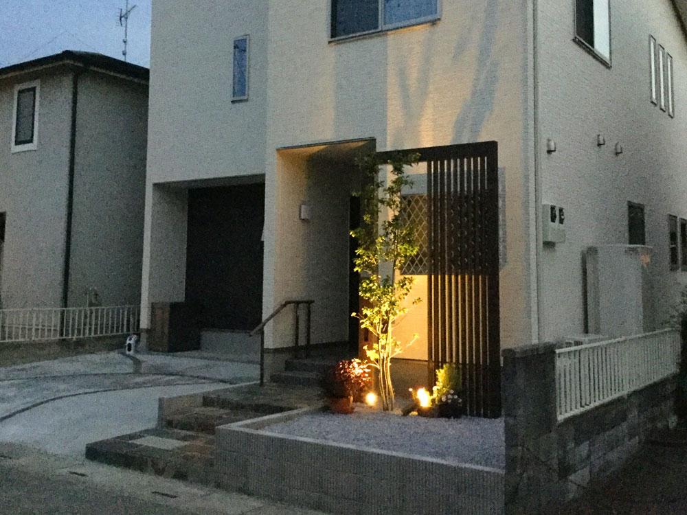 ソヨゴ株立(高さ3.0m)ライトアップ